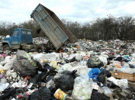 СМИ узнали о риске остановки работы мусорных операторов из-за неплатежей