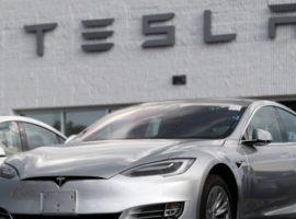 Суд в Берлине разрешил Tesla вырубить лес под стройку первого в ЕС завода